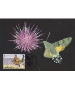 Guernsey Hummingbird Hawk Moth WWF Stamp First Day Cover Postcard - £4.50 GBP