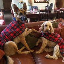 Danish Design Fleece Lined Shower Proof Dogs Coat in Tartan - $36.12+