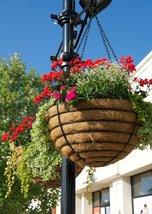 Euro Classic Hanging Basket and Liner Set - Set of 2 Baskets and Liners - €73,67 EUR