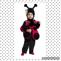 Disguise Baby Lady Bug Costume 12-18m Boys - £15.05 GBP