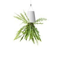 Upside Down Plant Pot Garden Hanging Flowers Indoor Suspension Basket Ce... - ₨1,017.04 INR