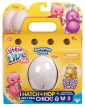 Little Live Pets Surprise Chick 28364 Single Pack - $13.63