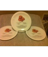 (3) PEANUT BUTTER COOKIE--PLATES / TRAY--RECIPE-- --FREE SHIP---VGC - $33.38