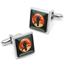 Gothic Raven Nevermore Crow & Moon Sterling Silver Glass Cufflink Set w/... - $32.39