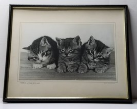 1966 THREE LITTLE KITTENS Exhibited AWARD WINNING PHOTOGRAPH Framed 21×1... - $59.35