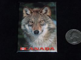 "CANADA CANADIAN FLAG WOLF DOG 3"" X 2"" ICE BOX REFRIGERATOR FREEZER MAGNET - $12.98"