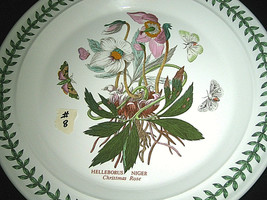 "Portmeirion Botanic Garden Dinner Plate Christmas Rose 10 1/2"" #8 - $24.99"