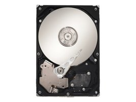 "Seagate SV35.2 Series ST3500630AV - Hard drive - 500 GB - internal - 3.5"" - ATA-"