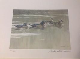 Hurricane Lake Wood Ducks by Robert Bateman - Arkansas 1987 - Print/2 St... - $130.00