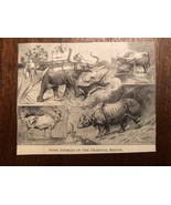 "Vintage Engraving Print of ASIAN ANIMALS Tiger Elephant Unframed 3"" x 4"" - $7.25"