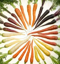 SHIP FROM US 500 RAINBOW CARROT MIX White Red Yellow Purple Orange  Seed... - $12.00