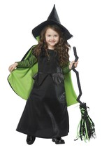 California Costumes Wicked Witch of Oz Toddler Halloween Costume Party 0... - $28.99