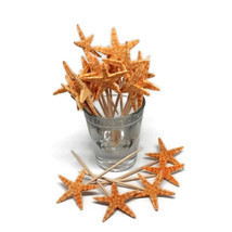 20 Real Starfish Toothpicks for Beach Wedding Shell Tiki Bar Party - £6.06 GBP