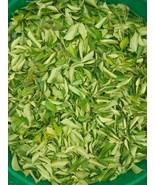 100g Sun Dried Curry Leaves Organic From Ceylon Murraya koenigii - $11.99