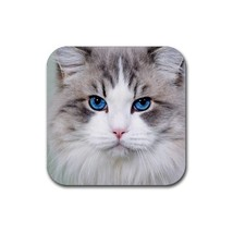 Cute Blue Eyed Cats Kitty Kitten Pet Animal (Square) Rubber Coaster - $2.99