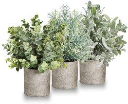 Mini Artificial Plants Faux Plant Set -for Home Decor Indoor Desk Plant - $75.00