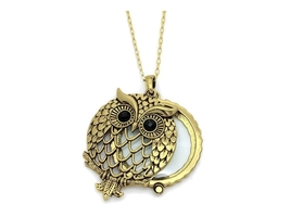 Goldtone Owl Magnifying Glass Pendant Necklace - $15.95