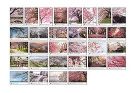 Set of 30 Post Cards for Worth Collecting Cherry Blossom Pattern - £9.11 GBP