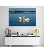 3D White Swan Lake T395 Animal Wall Stickers Vinyl Wallpaper Mural Wall ... - $15.72+