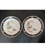 "Lot of 2 Noritake Keltcraft Tranquil Glen Blue Band Pheasant 10.5 "" Dinner Plate - $30.84"