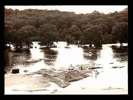 Flood Swimmers Photograph Structures Trees Unidentified Early Flood Waters - $14.99