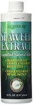 Grow More 6024 Seaweed Extract 11%, 1-Pint - $11.11