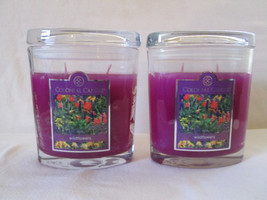 2 Colonial Candle~WILDFLOWERS~ 8oz Oval Jar Candles, 2 wicks - $32.00