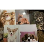 Pen+Gear Two Pocket Paper Folder, Cats & Dogs, (Pack of 4) Adorable Desi... - $16.99
