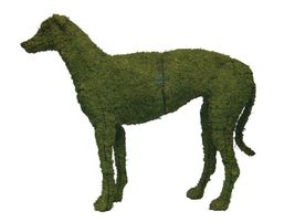 "Greyhound 37"" Moss Topiary Sculpture - $357.99"