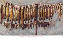 Fishing Catch My Morning's Work Lake Minnetonka Minnesota 1910c postcard - $7.43