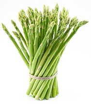 Jersey Supreme Asparagus Plants Crowns Roots Bare Root 25 Ea All Male by... - $24.70