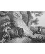AESOP FABLES Animals Fox & Wild Boar - 1811 Original Etching Print - $25.20