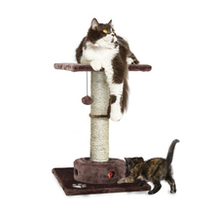 Tiger Tough Cat Scratcher w/Cat-IQ, busy box Play Ground Brown 96300