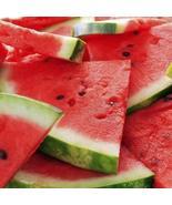 1 Packet of 50 Seeds Watermelon Crimson Sweet/Cucurbitales Cucurbitaceae... - $17.64