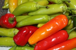 Sweet Pepper Hungarian Sweet Wax - Jumbo Sweet Pepper, 1000 heirloom Seeds - $40.88