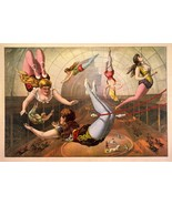 Female Acrobats 1890 Circus Vibrant Colors 11 x 17 Reproduction Print Vi... - £12.96 GBP