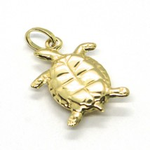 18K YELLOW GOLD PENDANT, ROUNDED TURTLE, SMOOTH, 0.7 INCHES, MADE IN ITALY image 1