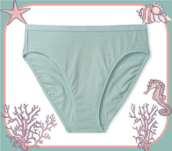 M L XL XXL Sage Green Stretch Cotton Victorias Secret HighLeg Waist Brie... - $10.99