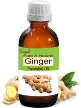 Ginger Oil- Pure Natural Essential Oil-50ml Zingiberaceae officinale by Bangota - $34.81