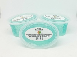 Eucalyptus Mint scented Gel Melts for tart/oil warmers - 3 pack - $9.95