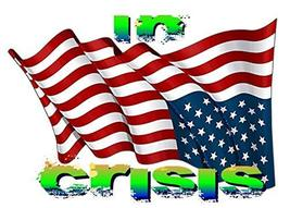 In Crisis American Flag Sticker Decal Patriotic 4th of July - $6.81