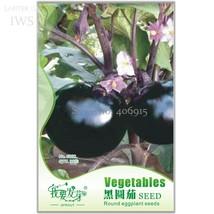 BEST PRICE 30 seeds Heirloom Black Round Eggplan, FS DIY Home Garden Veg... - $8.99