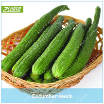 100 Pcs/pack Cucumber Vegetable Seeds Organic Vegetable Seeds - $4.76