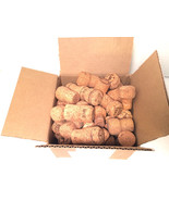 Natural CHAMPAGNE Sparkling Wine Corks Lot of 50 Project Crafts Favors - $15.79