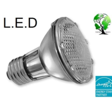 1 Pcs Lamp PAR20 60-LEDs 6000K 110V Spot Light Bulb E27 European Base - RK - $44.00