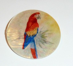 """Colorful Parrot Bird - Mother of Pearl MOP Shank Button - 1-3/8"""" Red Blu... - $11.87"""