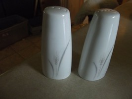 Fine China of Japan Platinum Wheat salt and pepper shaker set 1 available - $15.74