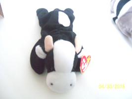Plush Cow Ty DAISY Stuffed Animal black white 1994 1993 pvc 4006 All tags - $9.89