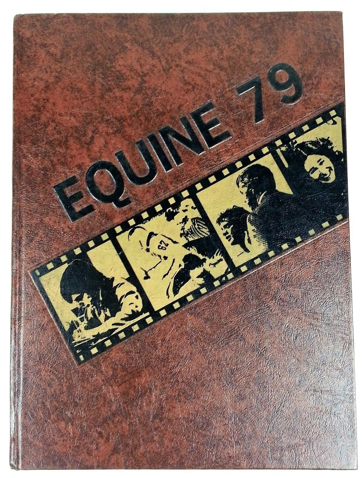 Primary image for Hempstead High School 1979 Yearbook Equine Dubuque IA Mark Steines LeRoy Cain