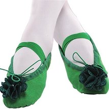 Dance Class Ballet Shoes/Canva Dance Shoes for Pretty Girl (19.5CM Length)-Green